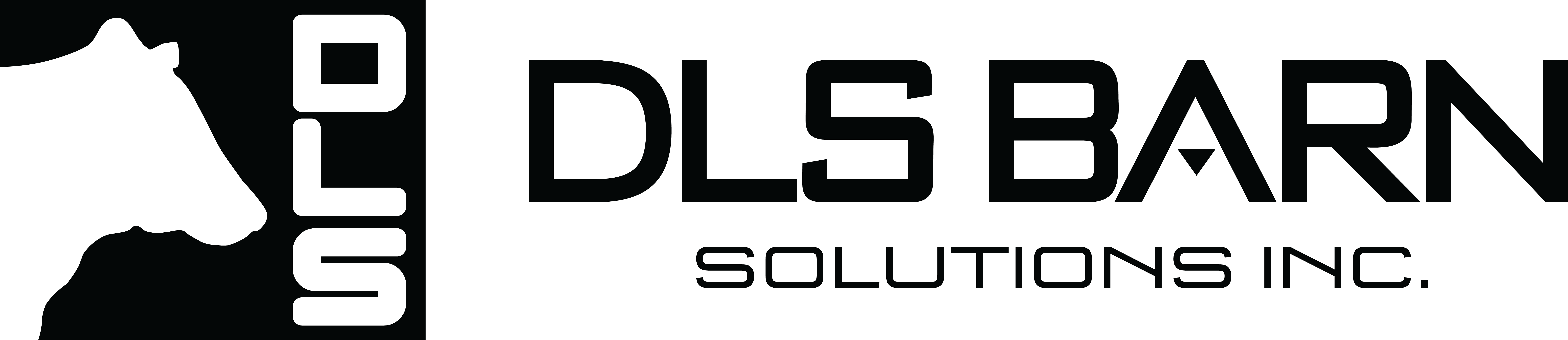 DLS SBarn Solutions Inc